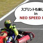 ネオのスプリントレース